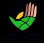 Latino Service Providers Logo